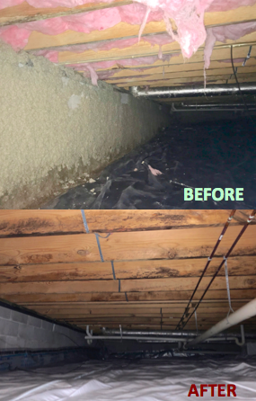Before and After Crawlspace Photo